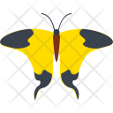 Mocker Swallowtail Insect Icon