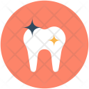 Molar Teeth Tooth Icon