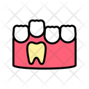 Baby Molar Teeth Icon