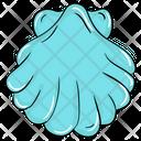 Mollusk Icon