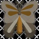 Monarch Zoology Entomology Icon
