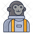 Moneky In Space Icon