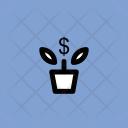 Money Plant Pot Icon