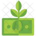 Money Growth Dollar Money Business Development Icon