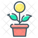 Money Growth Flower Growth Icon