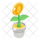 Plant Bitcoin Bitcoin Growth Money Growth Icon