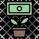Money Money Growth Financial Icon