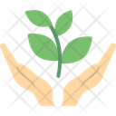 Money Growth Money Plant Business Cooperation Icon