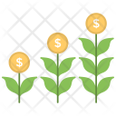Money Plant Growth Icon