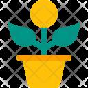 Growth Money Plant Icon