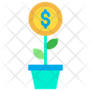 Money Plant Growth Dividend Icon
