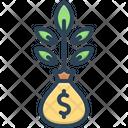 Money Plant Money Plant Icon