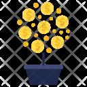 Money Plant Tree Icon
