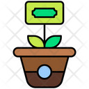 Money Plant Growth Business Growth Icon