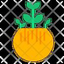 Money Plant Bowl Green Icon