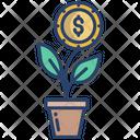 Money Plant Dallor Plant Money Growth Icon