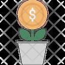 Money Plant Plant Icon