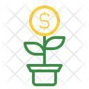 Money Plant Icon