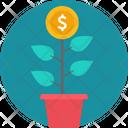 Money Plant Dollar Icon