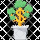 Money Plant House Plant Icon