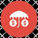 Money Protection Dollar Icon