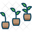 Growthv Monitor Growth Growth Icon