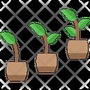 Monitor Growth Icon