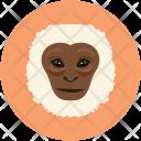 Monkey Animal Face Icon