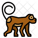 Monkey Zoo Ape Icon
