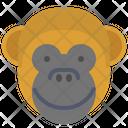 Monkey Smile Icon