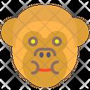 Monkey Eat Icon