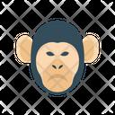Monkey Circus Animal Icon