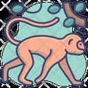 Animal Zoo Baboon Icon