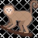 Animal Pet Wild Animal Icon