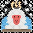 Monkey Snow Animal Icon