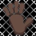 Monkey Zoo Mammal Icon