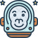 Monkey Of The Space Icon