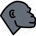 Monkey Pet Animal Icon