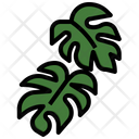 Monstera Icon