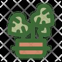 Monstera Deliciosa Icon