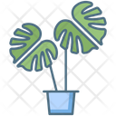 Monstera Deliciosa Plant Monstera Deliciosa Pot Monstera Deliciosa Icon
