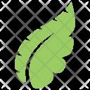 Tropical Monstera Plant Icon