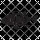 Moorii Pet Underwater Icon