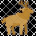 Moose Deer Zoo Icon