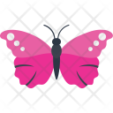 Morpho Insect Specie Icon