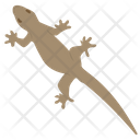 Mosasaurus Lizard Icon