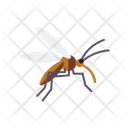 Mosquito Fly Insect Icon