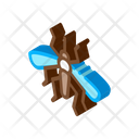 Insect Mosquito Bug Icon