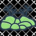 Moss Lichen Dartre Icon