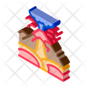 Ertnquake Mountains Earthquake Icon